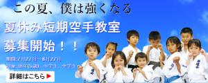 karate-summer-schoole
