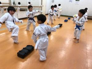 2018.5.8 武道空手少年クラブ小平市鷹の台教室